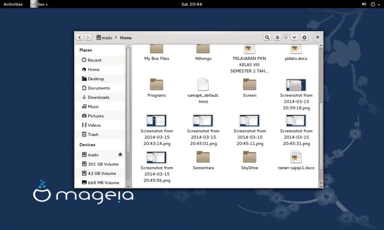 mageia 4 gnome 3 borderless window